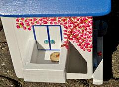 Houten Nestkastje, Nestkastje met Balkon, Details, Vogelhuisje bouwen, vogelhuisje met balkon_6
