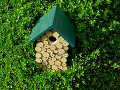 Houten Nestkastje, Nestkastje met hout bruin en groen, Details, Vogelhuisje bouwen ,  vogelhuisje met hout bruin en groen_4