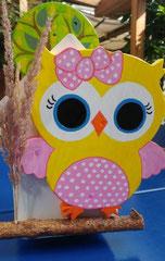 houten nestkastje beschilderd baby_ uil  vogelhuisje uniek speciaal