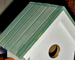 Houten Nestkastje, Nestkastje  met speciaal raam en deur, Details, Vogelhuisje bouwen ,  vogelhuisje met speciaal raam en deur_3