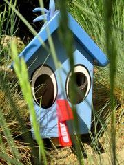 """Houten Nestkastje , """"Nestkastjes in vorm van Vogel groen , Details, Vogelhuisje bouwen als Vogel_2"""