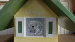 houten vogelhuisje beschilderd portret hond urne hond_2
