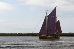 Altes Segelschiff in Boddenlandschaft