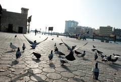 Dubai - Old Souk