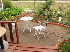 2012/06/08(金)  庭には大葉、ミツバ、ミョウガなどが生えています