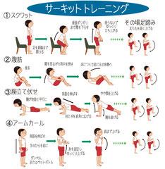 ストレッチ サーキットトレーニング スクワット 腹筋 腕立て伏せ アームカール