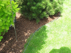 Trennung zwischen Gras und Beet mit Rindenmulch durch Metallrasenkanten