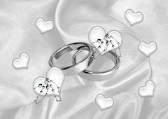 Hochzeit auf Schloß ..... von ... & ...