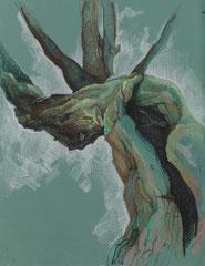 """Ольга Попова. """"Анатомия дерева"""" лист 3, пастель, литографский карандаш, 2003"""