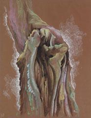 """Ольга Попова.""""Анатомия дерева"""" лист 2, пастель, литографский карандаш, 2002"""