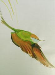En vol, 70x100 cm, 2011, Gouache auf Papier