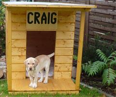 Craig, Herbst 2007