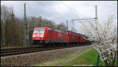 VW-Zug am 21.04.2010 mit 185 277 unterwegs.