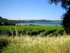 Fart entlang des Lago Corbara