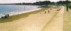 Der Wandeerweg am Strand entlang