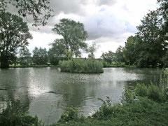 Kleiner See unweit der Frankentherme