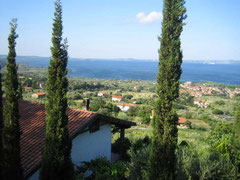 Blick auf den Bolsena See