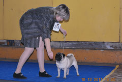 Маленрос Кристи Коузи