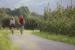 Radfahren in den Obstwiesen