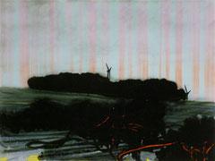 o.T.(lab) 2012 Tusche, Acryl, rückseitig auf Acrylglas 50 x 70 cm