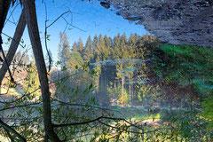 Peter Braunholz, PARALLEL NATURE I, Mühlviertel, Österreich , 2019, 100 x 150 cm, Archivpigmentdruck auf Hahnemühle Fine Art Baryta auf Alu-Dibond, Edition: 3 + e.a