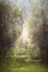 STADTPARK MAX-EYTH-SEE (II), 2005/2018, Digitale Malerei, C-Print auf Aludibond, kaschiert hinter Plexiglas, Ex.: a.p./V+1, 90 x 60 cm