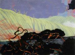 o.T. (landscape) Acryl und Tusche auf Acrylglas, auf AluDibond 60 x 80 cm