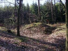 Seifenfeld oberhalb der Silbergruben