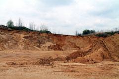 Eiszeitliche Kiesablagerungen im nördl. Hohwaldgebiet.