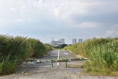 東京オリンピック関連施設