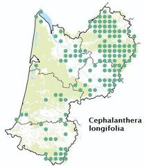 carte distribution Cephalanthera longifolia - Cephalanthère à longues feuilles