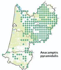 Carte distribution Anacamptis pyramidalis - orchis pyramidale