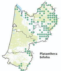 carte distribution Platanthera bifolia -  Platanthère à deux feuilles