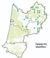 Carte distribution Epipactis muelleri - Epipactis de Muller