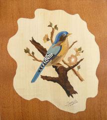 L'oiseau bleu 3 (245/270)