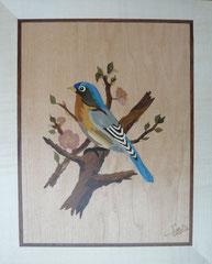 L'oiseau bleu (245/300)