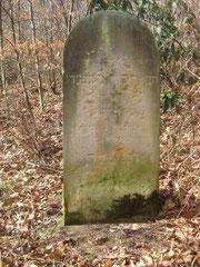 Grabstein des Ely Rosenberg mit hebräischer Inschrift auf der Ostseite