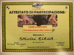 Cane e tartufo : introduzione alla ricerca ottobre 2012