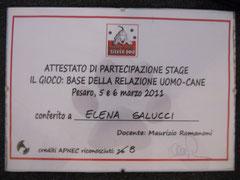 """Stage """"Il Gioco"""" 2011 Relatore: Maurizio Romanoni"""