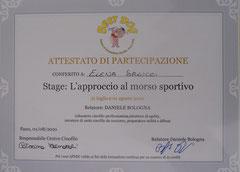 Stage Approccio al Morso Sportivo 2010 Relatore: Daniele Bologna