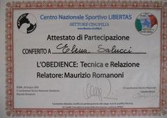 Stage Obedience 2009 Relatore: Maurizio romanoni