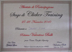 Stage Clicker Training 2010 Relatore: Valentina Balli