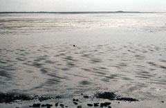 Sylt, Wattenmeer, Bild 4, analog fotografiert