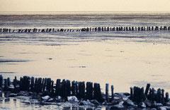 Sylt, Wattenmeer, Bild 7, analog fotografiert