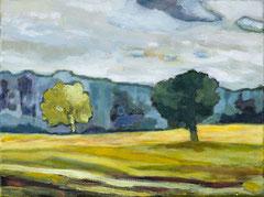 Felder und Bäume, 30 x 40 cm, Acrylfarbe auf Leinwand, 2019 - Thomas Anton Stribick