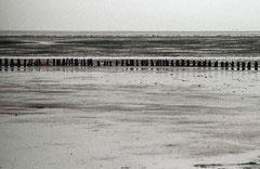 Sylt, Wattenmeer, Bild 6, analog fotografiert