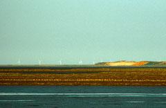 Sylt, Wattenmeer, Bild 8, analog fotografiert