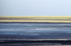 Sylt, Wattenmeer, Bild 3, analog fotografiert