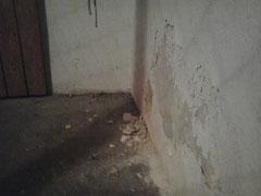 Salzausblühungen an der Wand durch Aufsteigende Feuchtigkeit im Mauerwerk