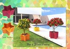 Bac à fleur & plantes Etoilia
